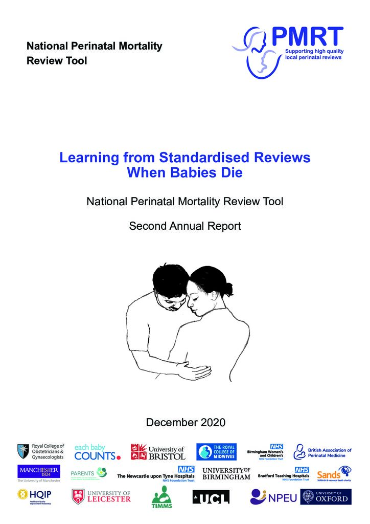 Perinatal Mortality Review Tool – Second Annual Report