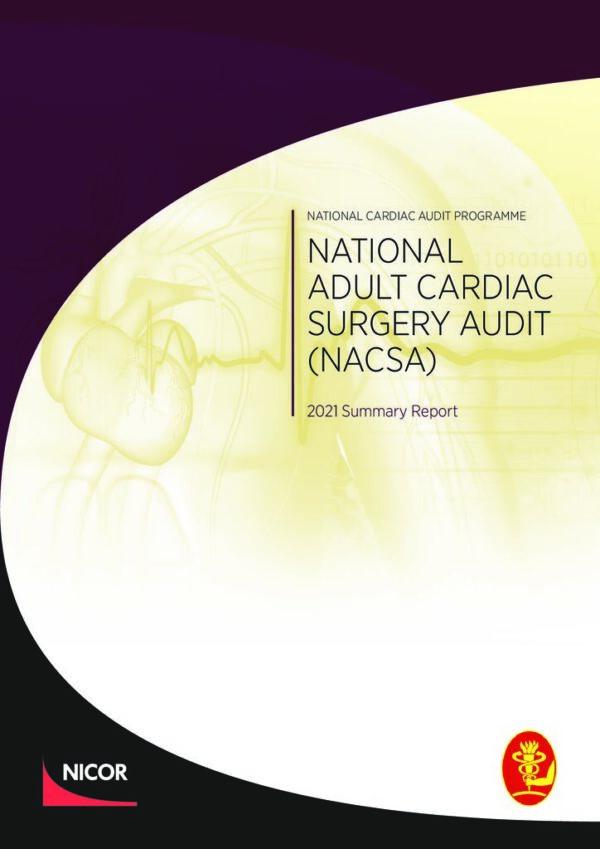 thumbnail of NACSA Domain Report_2021_FINAL