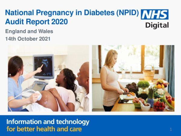 thumbnail of REF232_NPID-2020-Report_v20211010_FINAL